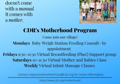 Virtual-Motherhood-cdr