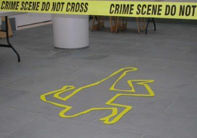 murder mystery colonial williamsburg