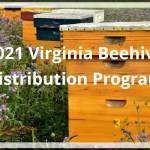 Beehive Distribution Program applications accepted July 20 - Aug 4, 2021