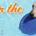Drool in the Pool is back on September 11, 2021