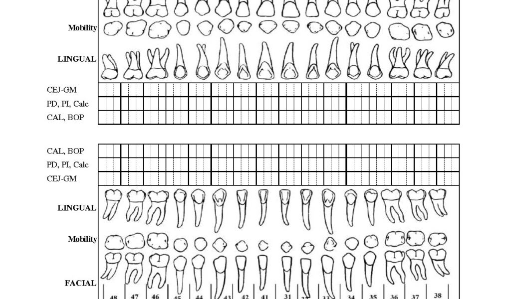 Periodontal Chart Template Periodontal Charting form Pdf