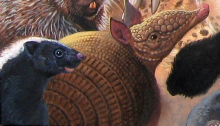 Menagerie – Skunk, Armadillo Detail