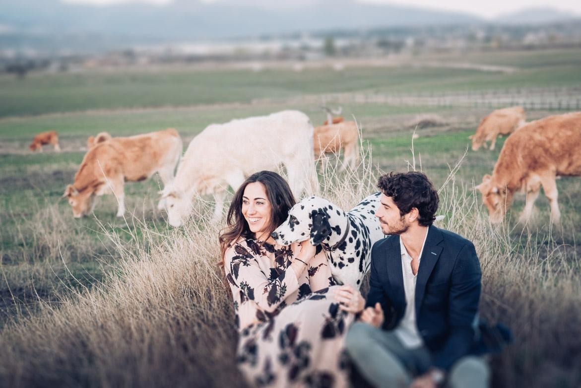 will marsala wedding photography preboda hipica con caballos-019