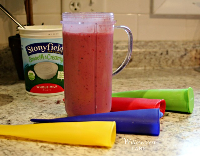 Smoothie Pops are a huge hit around here!
