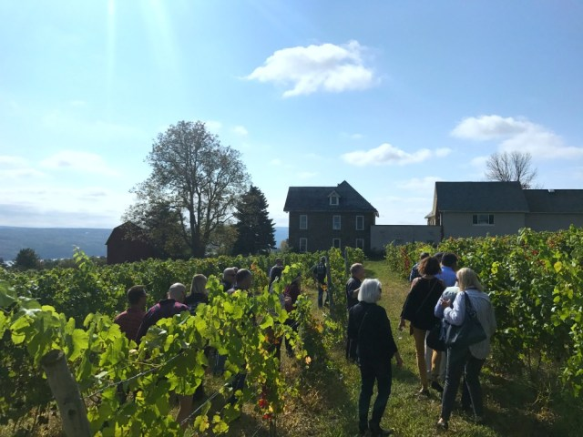 Take a fun trip to Finger Lakes Wine Country in NY.