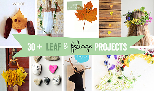 30leaf-foliage-header-for-all-posts