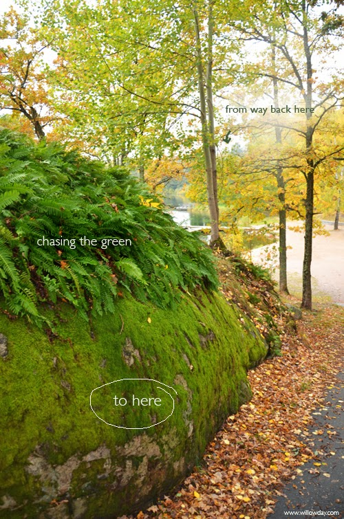 9-october-greena
