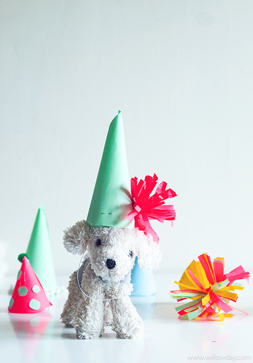 puppy-party-hat-awhite-pup