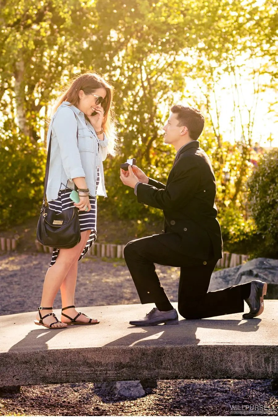 Surprise engagement proposal