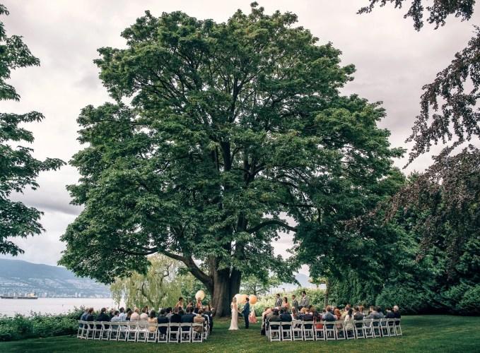 brock house outdoor ceremony under big tree