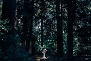 010 - forest wedding photos vancouver