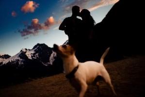 006 - dog engagement photos