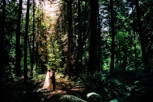 010 - rain forest wedding photos pnw