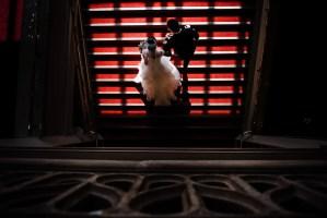 007 - orpheum vancouver wedding