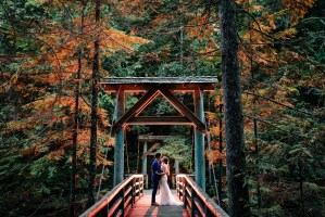 015 - forest wedding vancouver