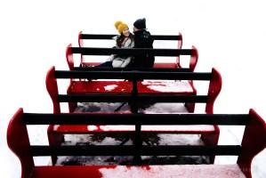 007 - grouse mountain sleigh ride