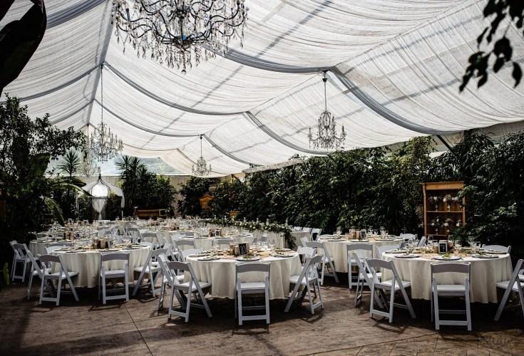 032 - greenhouse wedding photo fraser valley
