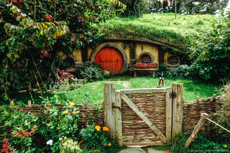 A Hobbit Hole and garden in the sun.