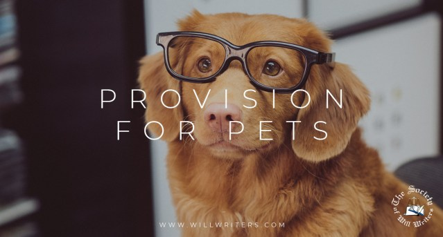 Provision for Pets