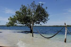 Amo a natureza, mar, vida e hoje mais que nunca aproveitar bem o meu tempo em serviço útil ao meu próximo