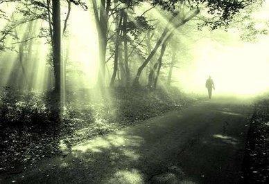 luz_no_caminho