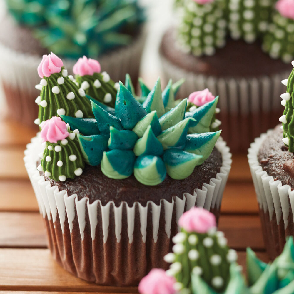 Blooming Succulent Cupcakes  Wilton