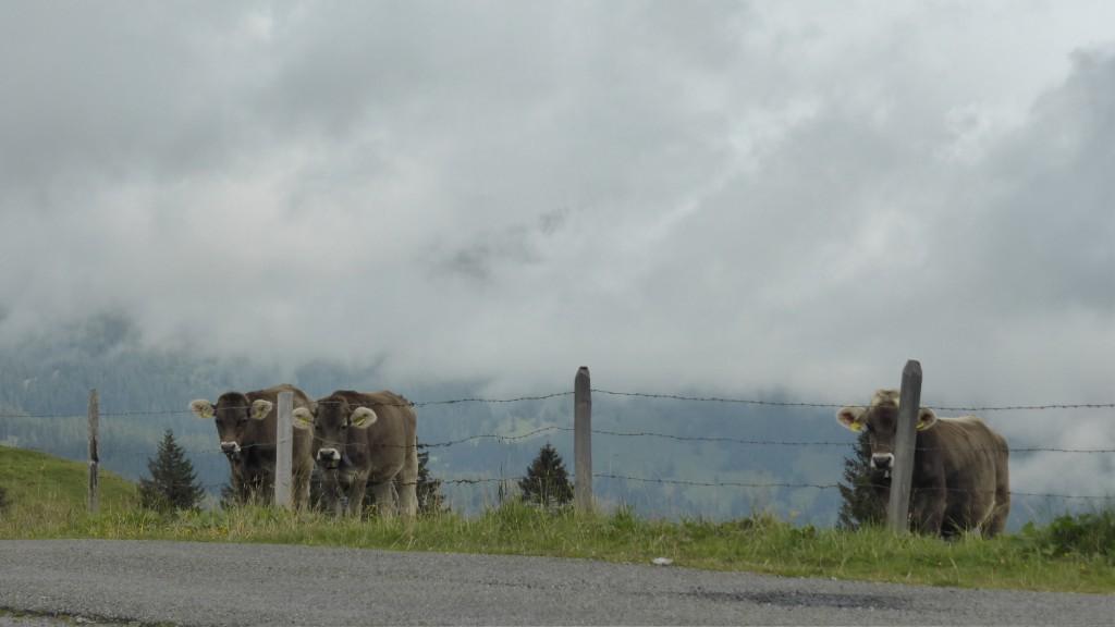 P1050282 Obwalden