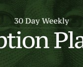 +30 Day Weekly Option Plays 10/31/19