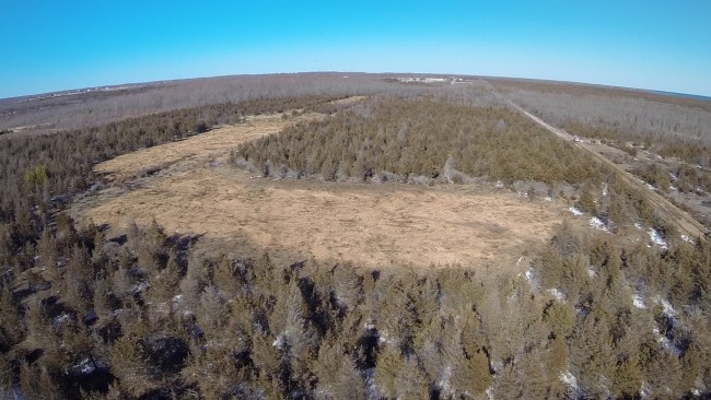 Massive clearing of vegetation in Prince Edward County wetland area prior to a stay motion being granted.