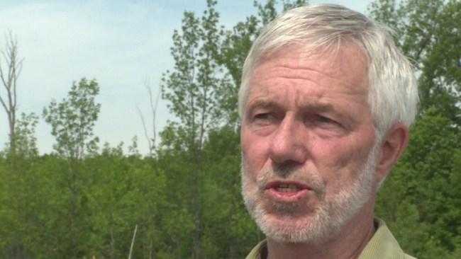 Mayor Higgins (Photo CBC)