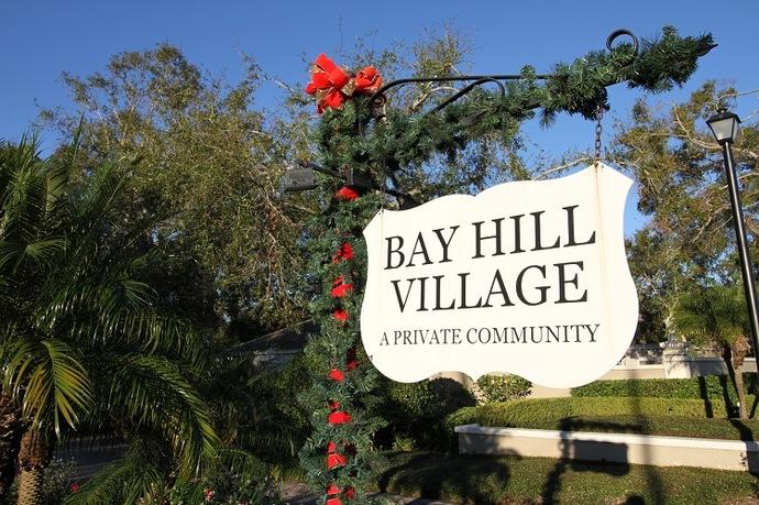 bay hill village orlando fl homes for