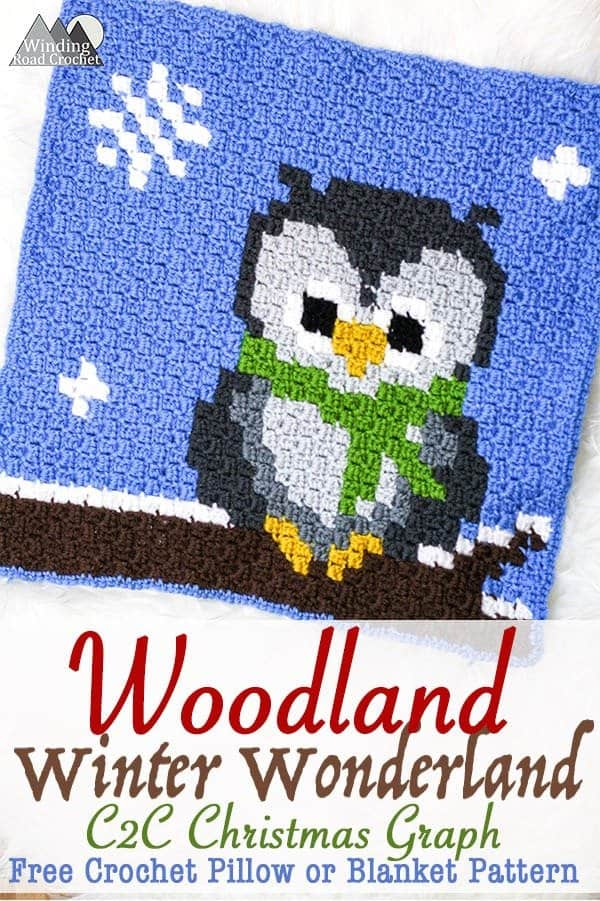 Wise Old Owl Crochet C2c Graph Winding Road Crochet