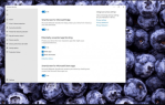 Windows 11 Defender stops PUA