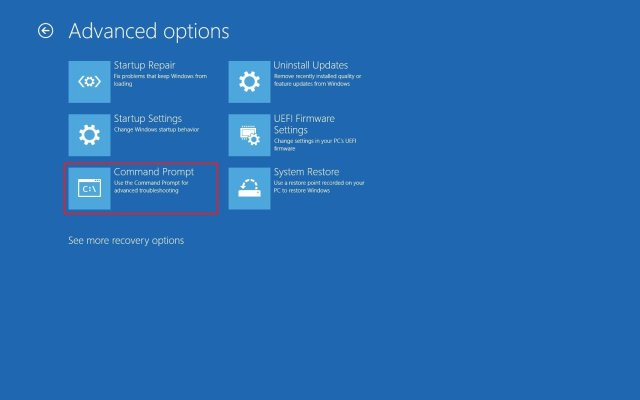 Advanced startup Command Prompt option
