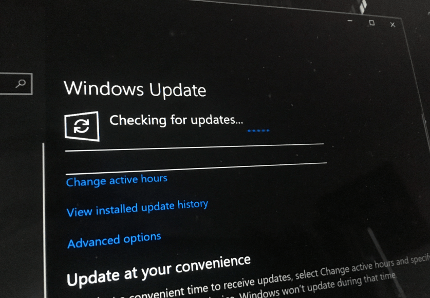 windows insider build latest