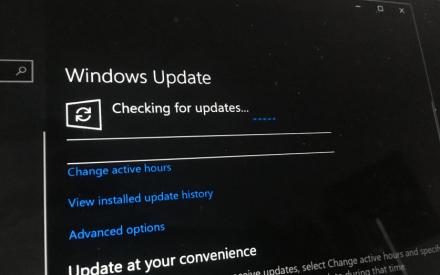 windows-insider-program-and-windows-insider-build