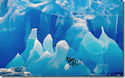 icebergwindows7background