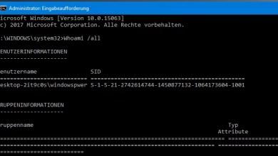 Windows 10 Benutzer und Eigenschaften anzeigen lassen 0
