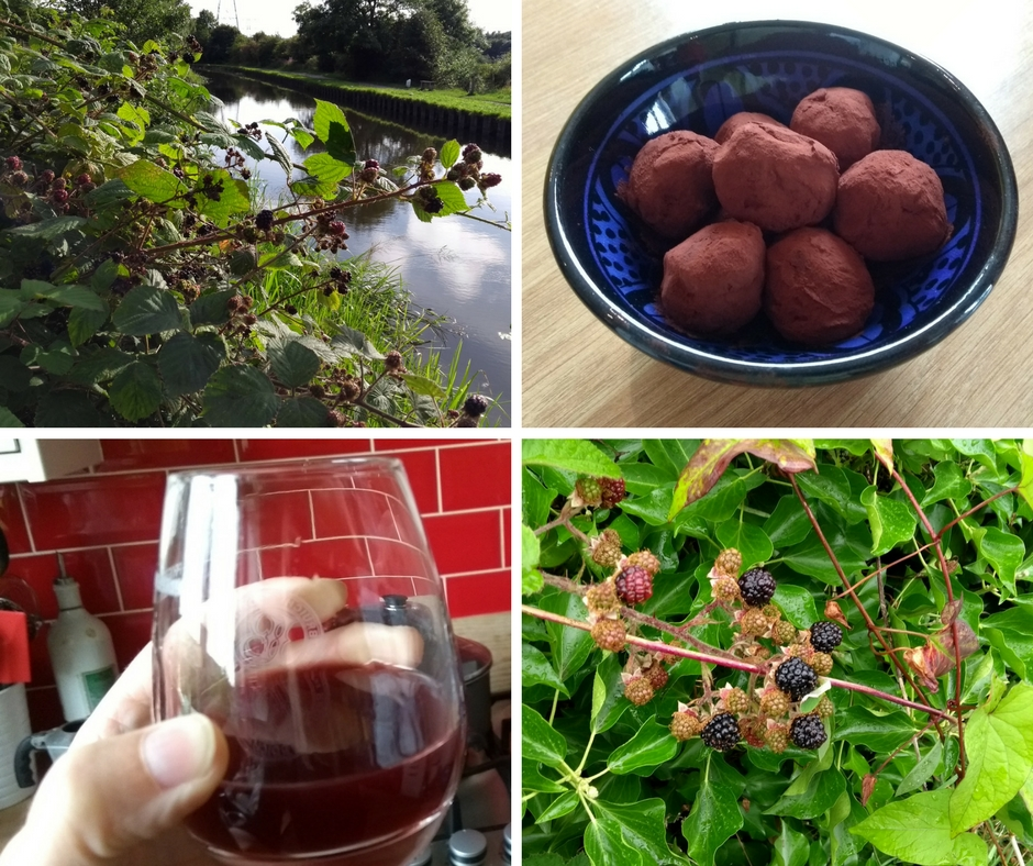 Blackberry bush, chocolates and blackberry gin