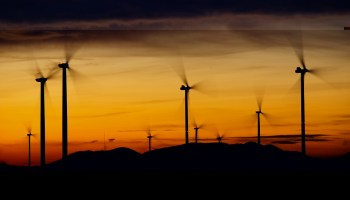 6 Major Environment Impact of Wind Turbine Which Should Mitigate