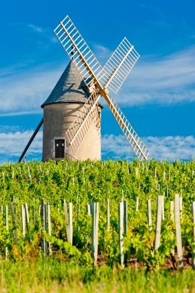 Scenic Beaujolais The Summer Wine Region French Wine