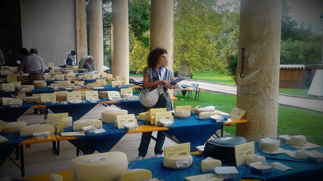 italian cheese competion