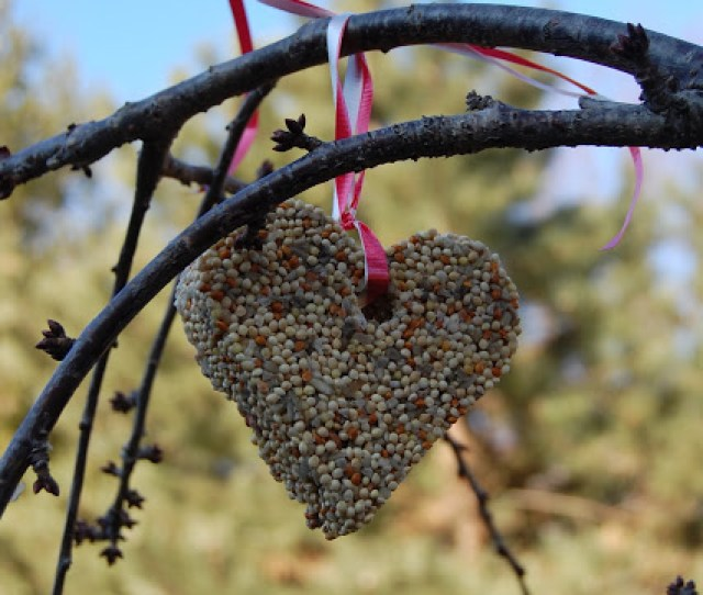 These Valentines Day Bird Feeders Are A Simple Craft And Make For A Cute Little Gift