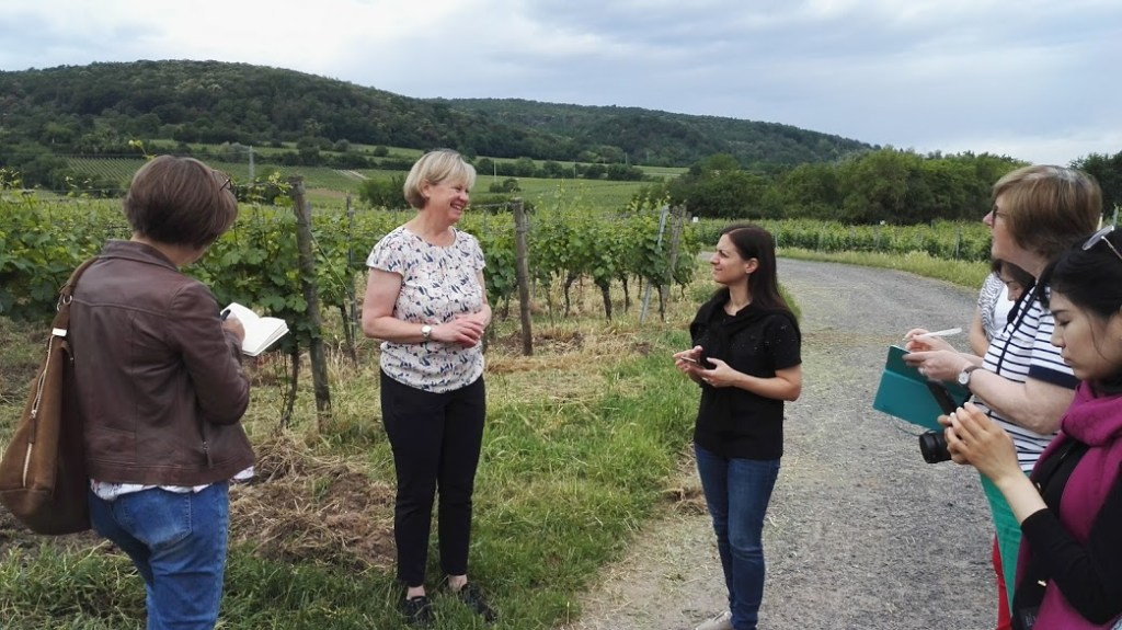 Tour by Sabine Mosbacher in the Mosbacher vineyards, Pfalz, Germany