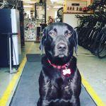 Haley – Shop Ambassador / Hiking Companion