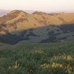Snyder Trail Hike