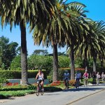 """Vines to Coast"" Santa Barbara Cycling Package"