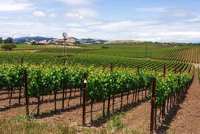 best winecountry backroad