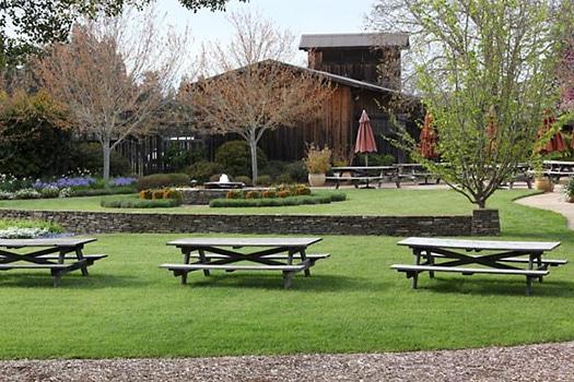 Anderson valley picnic