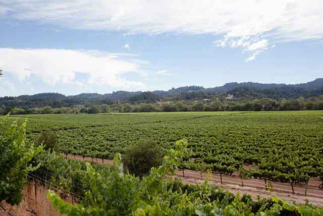 visit dry creek valley
